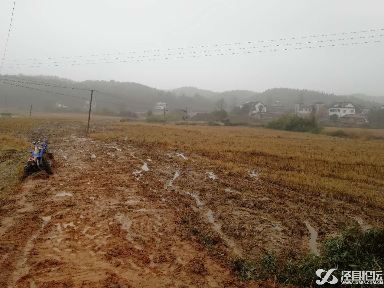 泾县论坛_20190105_194745.jpg