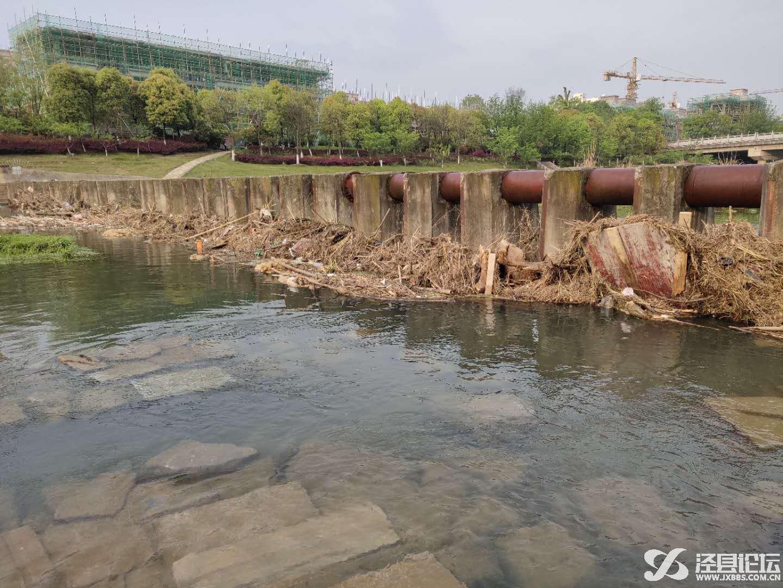 泾县论坛_20190414_070610.jpg